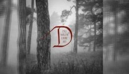 DORNENREICH – Du wilde Liebe sei